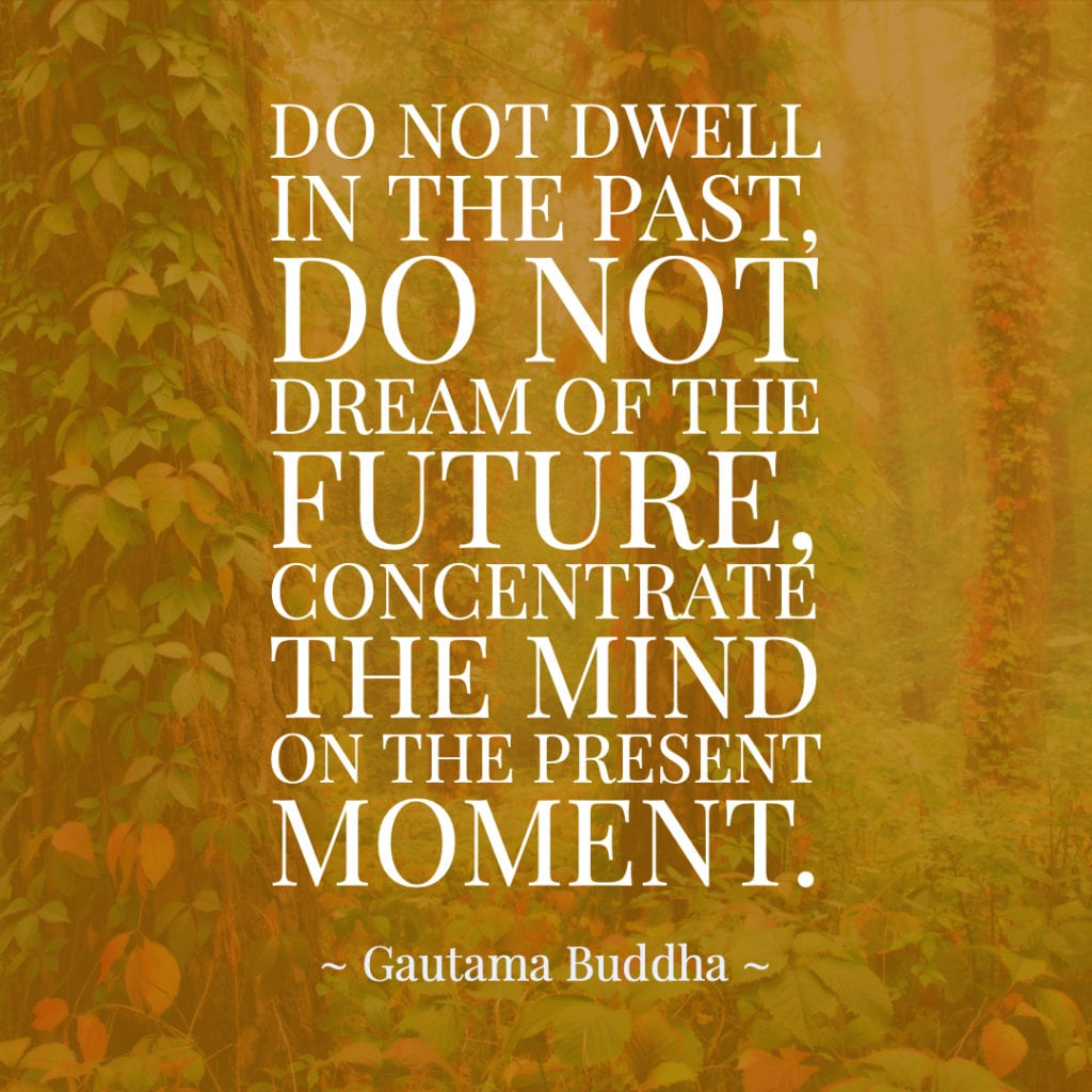 Past, Present, & Future Quotes Do not dwell in the past, do not dream of the future, concentrate the mind on the present moment. ~ Gautama Buddha